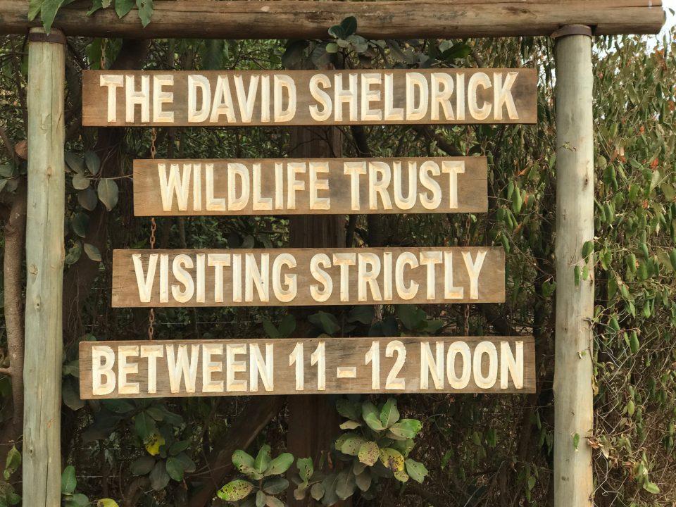 parchi Nairobi wildlife trust